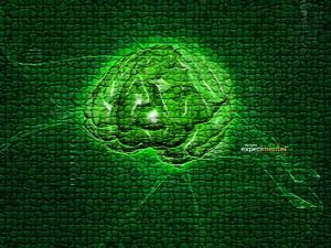 cerebro-300x225