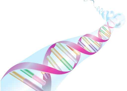 Illustration of a colourful DNA strand on white