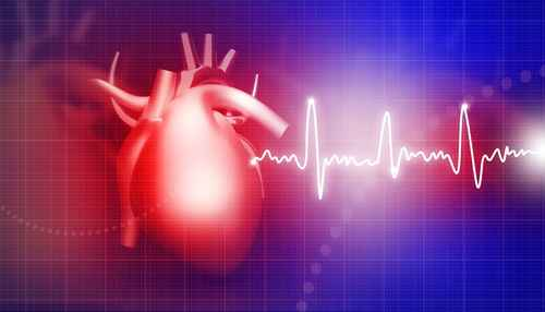 Human heart on medical background .