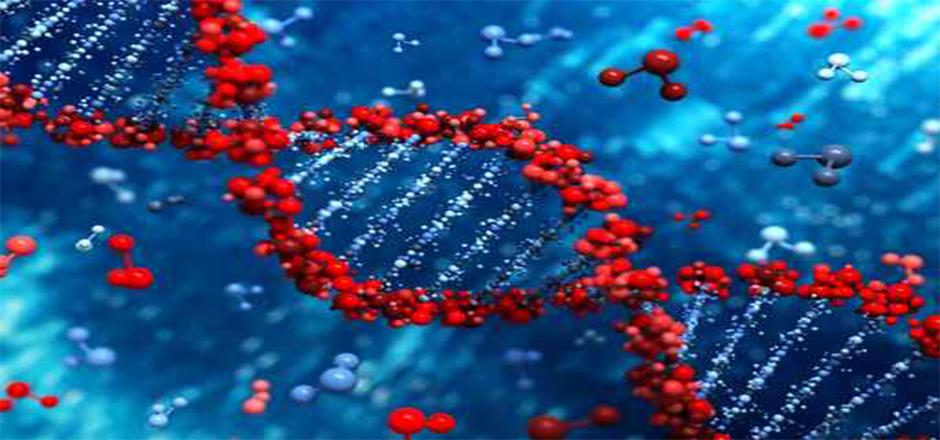 Descoberta do esconderijo do RNA viral do virus da imunodeficiência Humana
