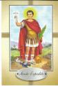 Agradecendo a uma graça alcançada eu coloco a imagem de Santo espedito neste site enquanto ele existir