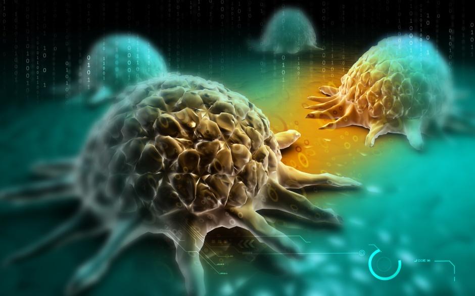 Anticorpo (antígeno) em ac'~ao contra elemento nocivo ao organismo