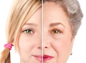 """Esta imagem representa, de uma forma plástica, um processo que, na verdade, nada tem de bonito. E não é """"o envelhecer"""", pois este pode ser um processo belo, partindo-se do princípio que ser jovem é saber envelhecer. O feio neste processo é o envelhecimento precoce que se dá por dentro, fazendo com que pessoas como eu, que tem 51 anos, não tenha energia para andar mais rápido do que 2,5Km/h enquanto a média de um ser Humano normal, na minha idade é de 4 KM/h. Dizendo isso, parece pouco. E é pouco. Isso é só a ponta do iceberg"""