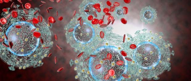 Representação Gráfica do HIV