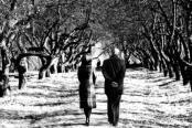 Um casal idoso indo em frente a despeito de tudo