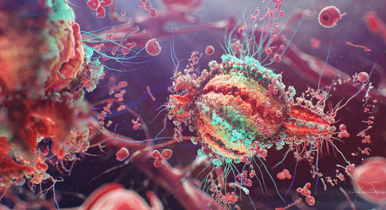 enfermidades oportunistas causadas pola SIDA
