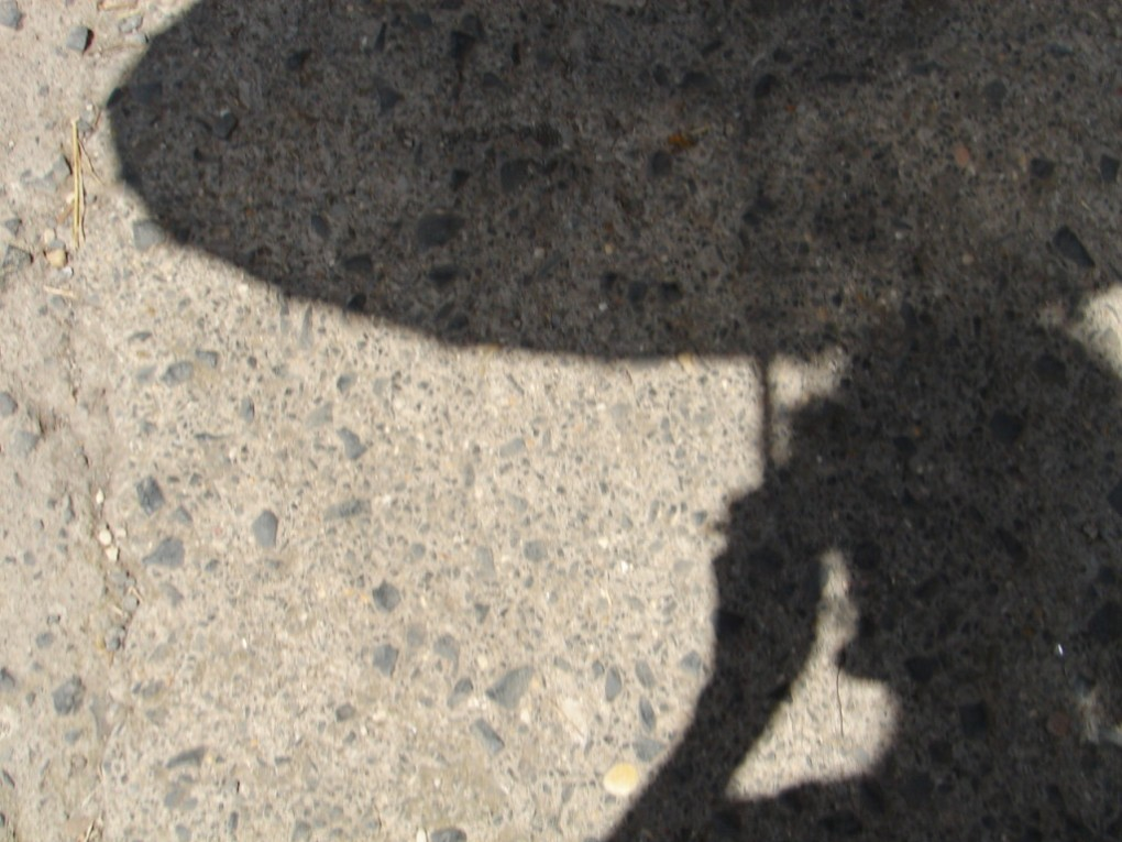 Moca da parasol negra sompra